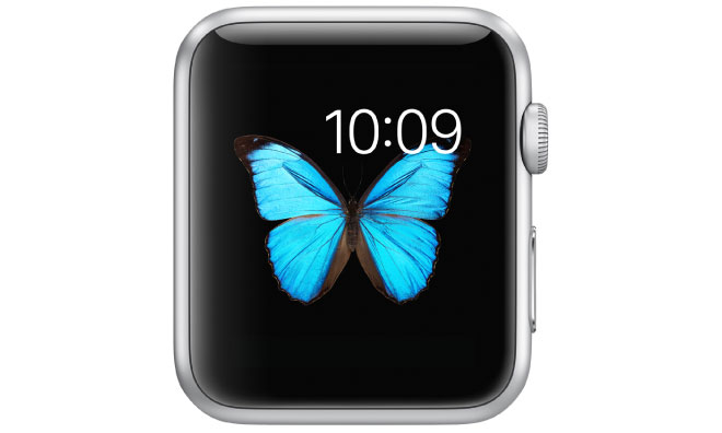 Apple Watch's advanced AMOLED display far more costly than ...